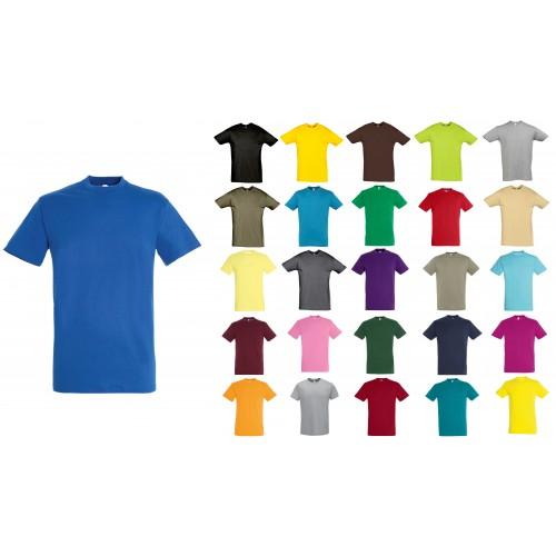 Футболка мужская S11380-1 цветная